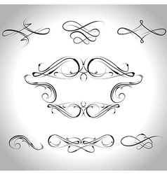 curls vector image vector image