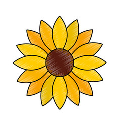 cute sunflower decorative icon vector image