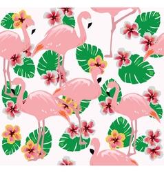 Flamingos two vector