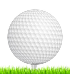 Golf Ball in Grass vector image