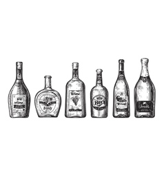 Hand-drawn set bottles for bar Alcoholic vector