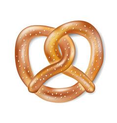 salty cracker realistic pretzel tasty isolated vector image