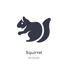 Squirrel icon isolated icon from animals vector