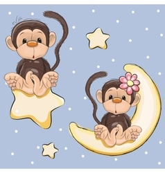 Lovers Monkeys vector image vector image