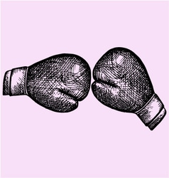 Pair leather boxing gloves vector image