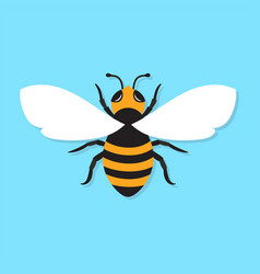 Bee icon flat vector