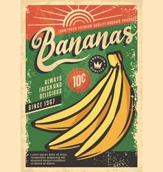 farm fresh bananas retro poster vector image
