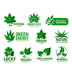 green leaves eco plants ecology environment vector image