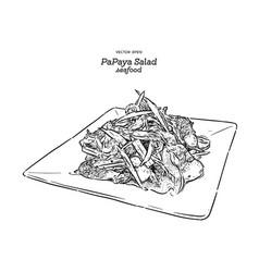papaya salad or som-tum thai food hand draw vector image