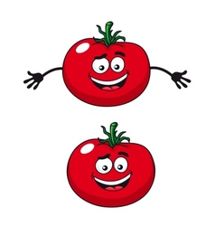 Two happy tomatoes vector image vector image