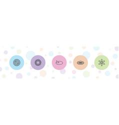 5 sunlight icons vector