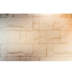 Decorative Brickwall Texture vector image