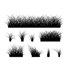 Grass silhouette elements isolated on white vector