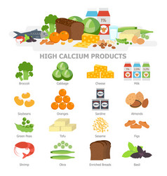 High calcium food infographic elements flat vector