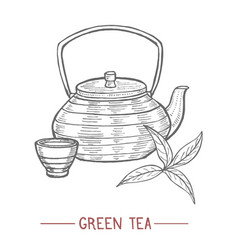 kettle cup and tea leaves in hand drawn style vector image