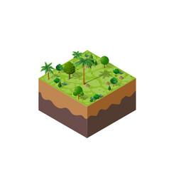nature forest landscape vector image