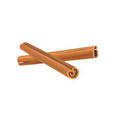Two brown sticks of cinnamon fragrant spice for vector