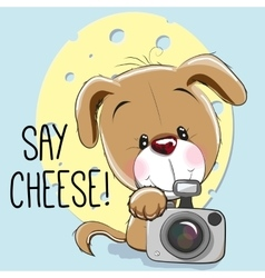 Dog with a camera vector image