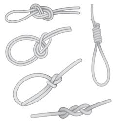 Set of knots vector image vector image