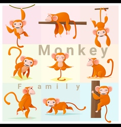 Set of Monkey family vector image vector image