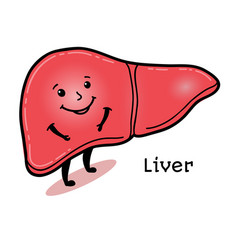 Cute and funny human liver character vector
