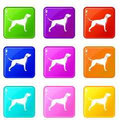 Dog set 9 vector