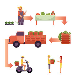farm products live circle concept vector image