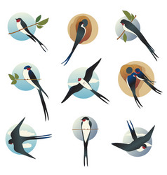 Flat set of martlets or barn swallows with vector