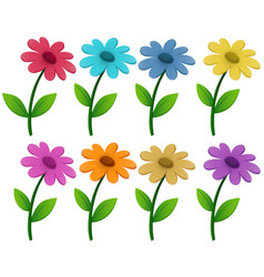 flowers in eight different colors vector image
