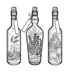Ocean flora and fauna in bottles vector