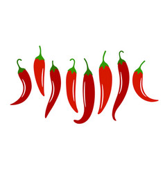 Spicy chili pepper vector