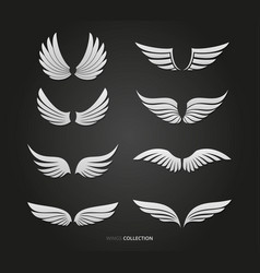 White feather wings set vector