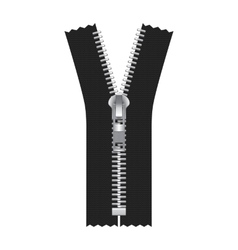 Zipper Isolated on White vector image