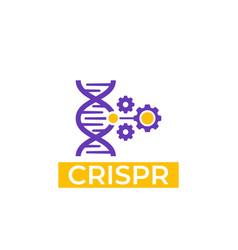 crispr icon vector image