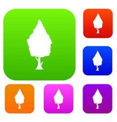 cypress set collection vector image