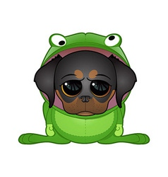 frog dog vector image