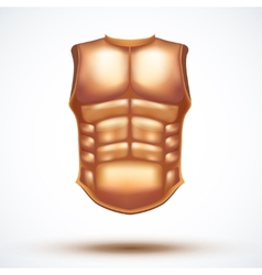 Golden ancient gladiator body armor vector image