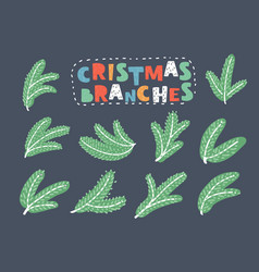 green fir branches symbol of merry christmas vector image