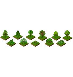 isometric park garden set trees bushes and shrubs vector image