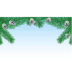 pine branches with cones vector image