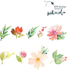 Watercolor cet vector image