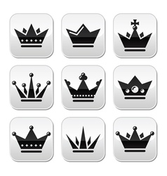 Crown royal family buttons set vector image vector image