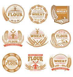 organic wheat flour farming grain products vector image vector image