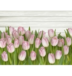 Tulips on wooden background eps 10 vector