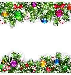 branches of Christmas tree vector image