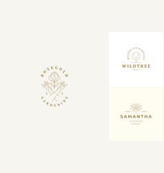 line logos emblems design templates set vector image