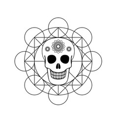 ornamental skull with geometric symbol vector image