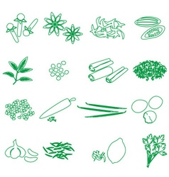 spices and seasonings outline icons set eps10 vector image