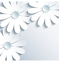 Stylish grey wallpaper with 3d white chamomile vector