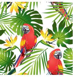 Tropic parrots vector